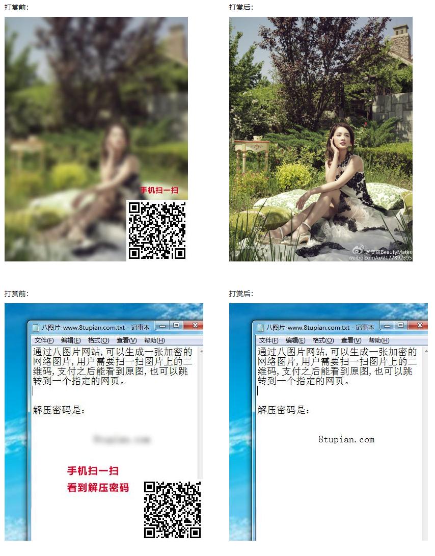 八图片 – 可以将图片或网址加密的网站,待扫码付款后解锁查看