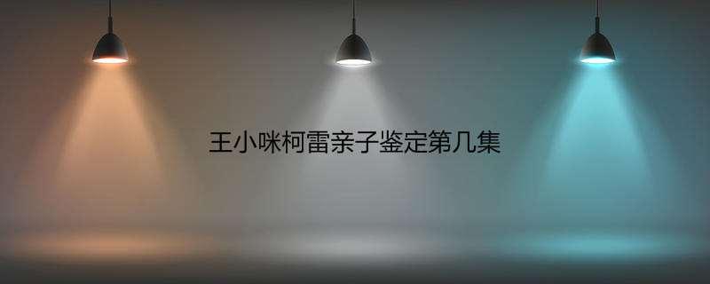 王小咪柯雷亲子鉴定第几集