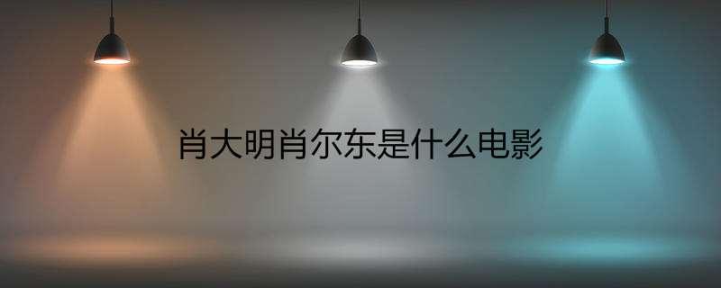 肖大明肖尔东是什么电影