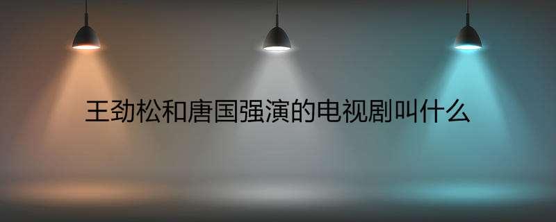 王劲松和唐国强演的电视剧叫什么
