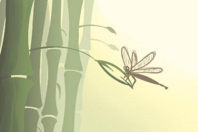 竹子开花意味着什么,异常出现意味着有人要去世