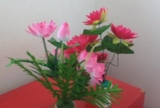 客厅为什么不能放假花,容易给主人带来霉运