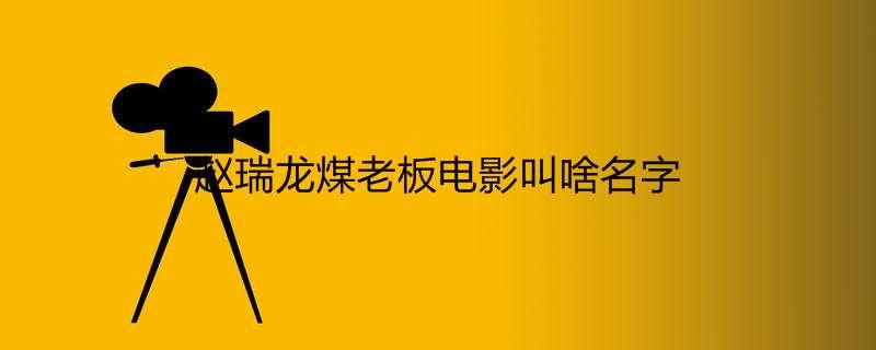 赵瑞龙煤老板电影叫啥名字