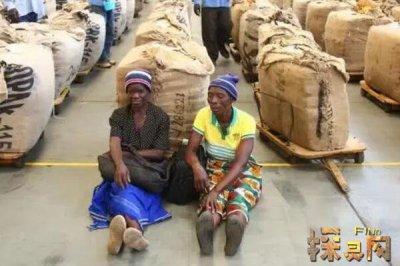 津巴布韦穷到什么程度,人均GDP0.1美元即6毛钱(正在恢复)