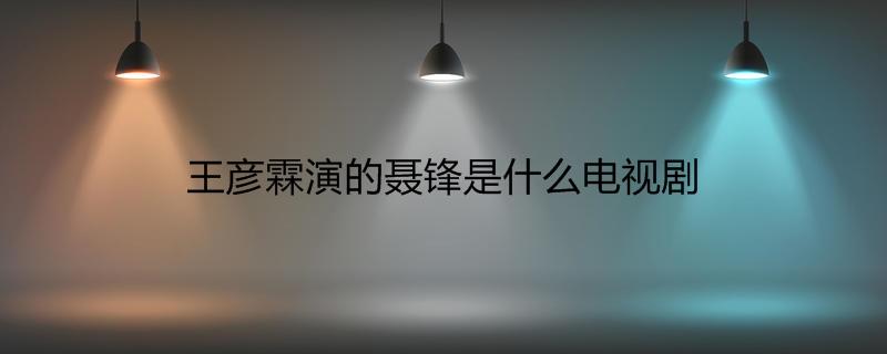 王彦霖演的聂锋是什么电视剧