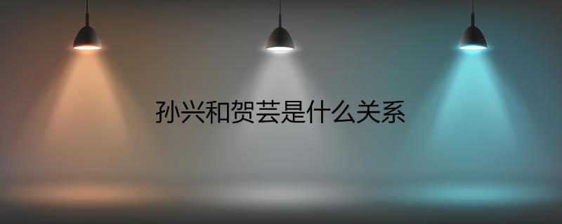孙兴和贺芸是什么关系