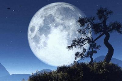 中秋节为什么赏月:将月亮作为情感的寄托(团圆的象征)