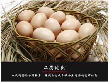 土鸡蛋和饲料鸡蛋营养价值一样吗